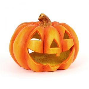pumpkin-786668_960_720